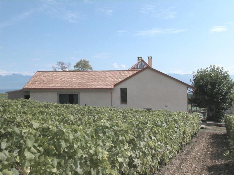 Maison vigneronne | Viborne